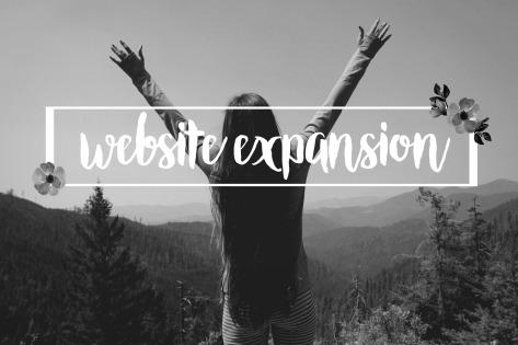 website expansion