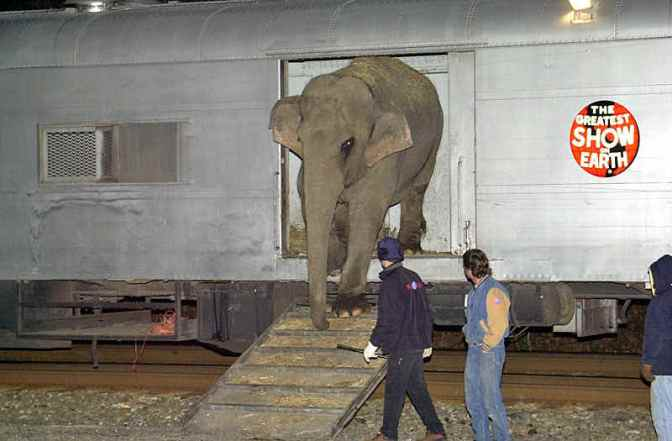 Some Pictures of the Dying Circus Train