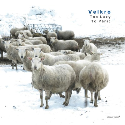 Velkro \ Too Lazy To Panic