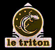 HENRY TEXIER SKY DANCERS » Dakota Mab – Le Triton