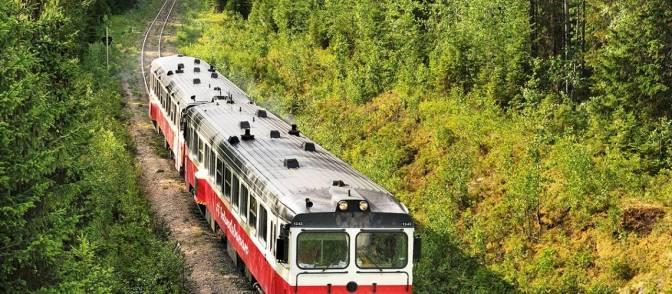Take the Slow Train